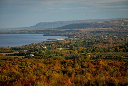 Fall colours from lookout